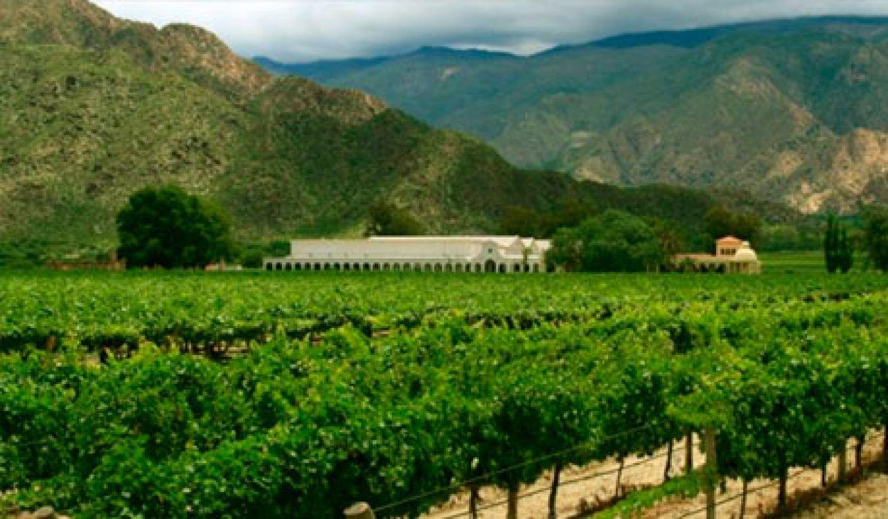 Ruta del Vino del Hotel Killa de Cafayate en Salta, Argentina